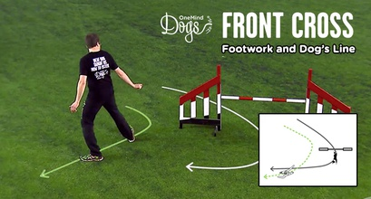 Front Cross - Footwork And Dog's Line