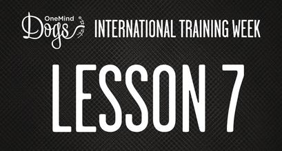 International Training Week - Practicing the Flip