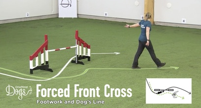 Forced Front Cross - Footwork And Dog's Line