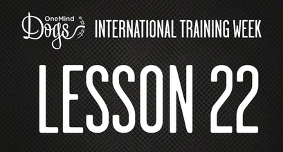 International Training Week - When Should You Use A Reverse Spin