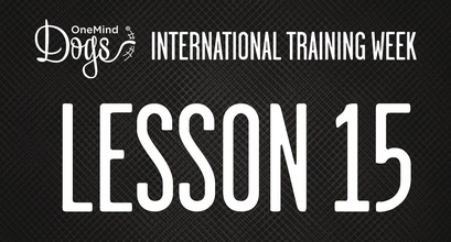 International Training Week - Tandem Turn and speed, part 1