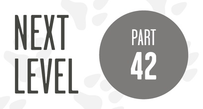 Next Level - Training to compete