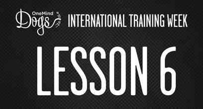 International Training Week - Practicing Lateral Push