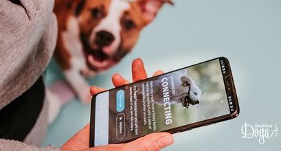 Want to expand your business? Think about how you could serve dog owners