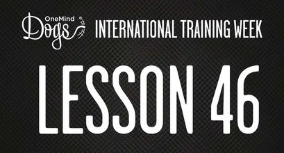 International Training Week - Practicing Blind Crosses - Part 3