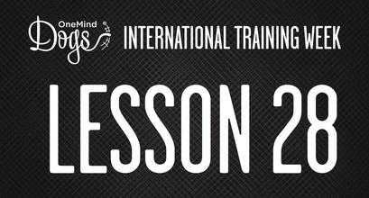 International Training Week - Training the Tandem Turn