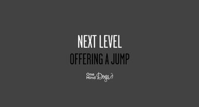 Next Level - Offering A Jump
