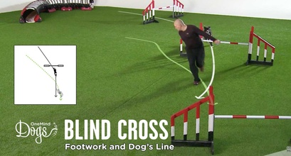 Blind Cross - Footwork And Dog's Line