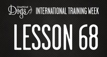 International Training Week - Tunnel-contact -discrimination
