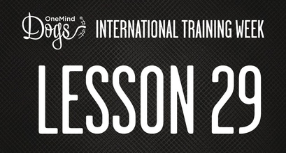 International Training Week-Collection And Turns From a Distance