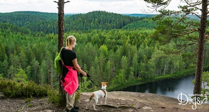 Green and clean Finland – a fun playground for agility dogs!