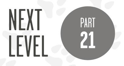 Next Level - V-Set, Reverse Spin & Flip