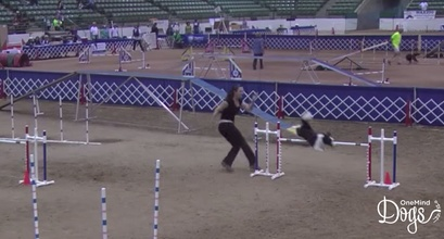 OneMind Dogs Coach Jessica Ajoux in the AKC Nationals
