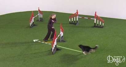 Technique Video Updates: Running on the Dog's Line