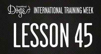 International Training Week - Practicing Blind Crosses - Part 2
