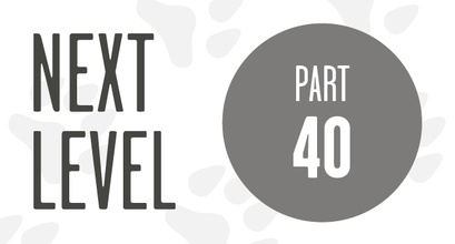 Next Level - Course Training With Distraction