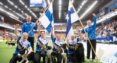 OneMind Dogs Coaches win Team Bronze At The World Championships!