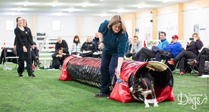 A Coach's Diary - OneMind Dogs Coach Pilot Week